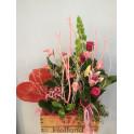 Caja Vintage Planta y flor natural